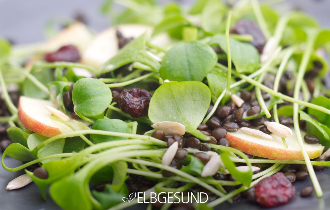 ELBGESUND_Linsen_Salat4